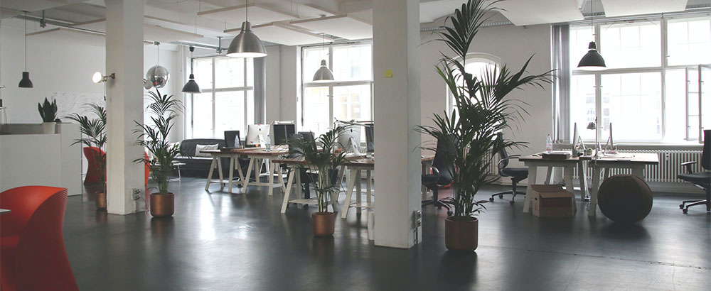 clean workplace environment